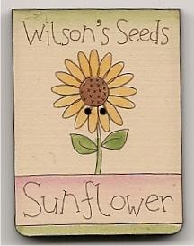 Seeds sunflower