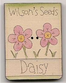 Seeds daisy